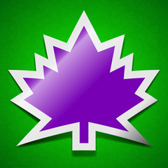 Maple leaf icon sign. Symbol chic colored sticky label on green