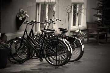 City bicycles clipped to a parking stand against thieves