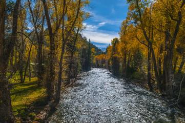 Crystal River Colorado Fall Colors