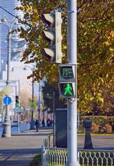 Пешеходный светофор с разрешающим сигналом