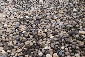 pebble stone texture background