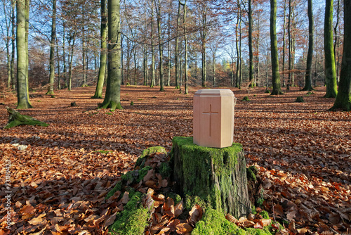 canvas print picture Waldfriedhof