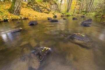 Jesienna rzeka