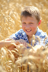 boy in a field of ripe wheat