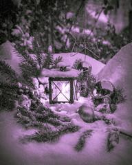 Weihnachtsstimmung in purpur