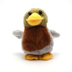 A daft duck