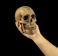 Holding human skull in hand. Conceptual image.