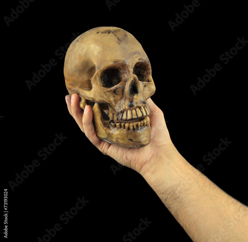 Poster Holding human skull in hand. Conceptual image.
