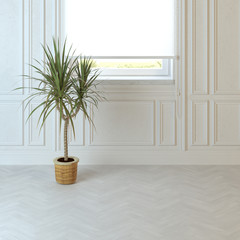 Empty living room design with Plant on the floor and window