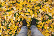 canvas print picture - Standing In Autumn Leaves