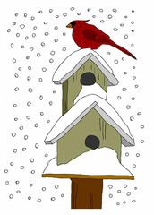 casette uccellini con la neve