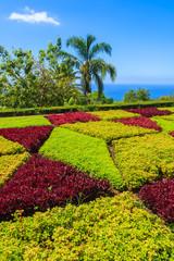 Famous tropical botanical gardens, Funchal town, Madeira island