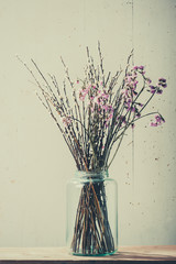 Beautiful dry flowers in a vase