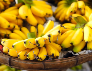 Shallow depth of field photography of ripe yellow bananas on loc