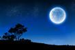 Full moon - 73197445