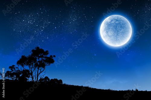 Foto op Canvas Nacht Full moon