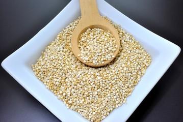Quinoa - Chenopodium quinoa