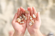 Child hands holding sea shells. - 73202668