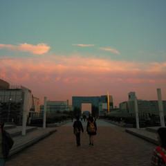sweet twilight