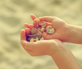 Child hands holding sea shells. Vintage effect photo.