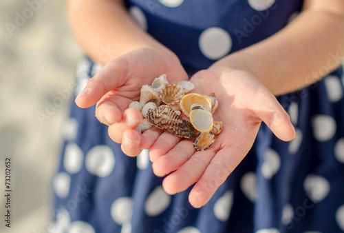 Child hands holding sea shells. - 73202652