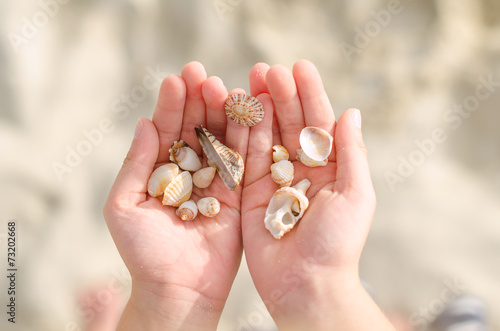 Leinwandbild Motiv Child hands holding sea shells.