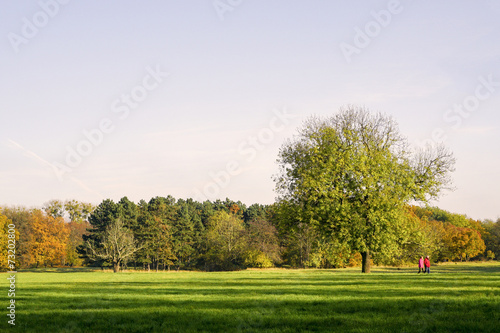 canvas print picture Herbst 02994