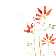 ed flowers, watercolor illustration. Floral background.