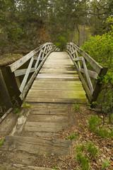 Ramsey Creek Scenic