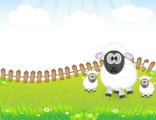 cute animal sheep family