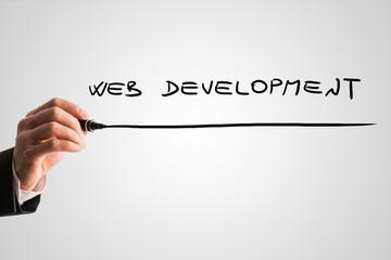 Businessman writing Web development