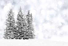 "Постер, картина, фотообои ""Snowy trees with twinkling silver background and snowflakes"""
