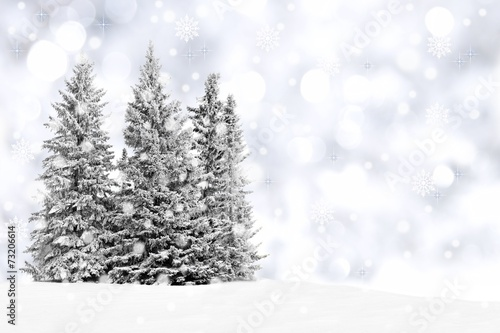 Poster Bossen Snowy trees with twinkling silver background and snowflakes