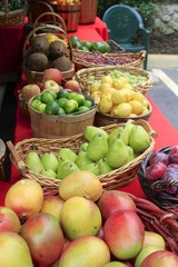 Farmers Market - Fairchild Gardens