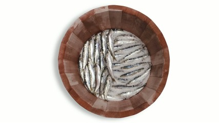 salting sardines in wooden barrel time lapse
