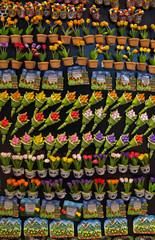 Amsterdam - Magnetic souvenirs
