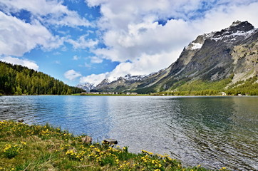 Swiss Alps-lake Silvaplana