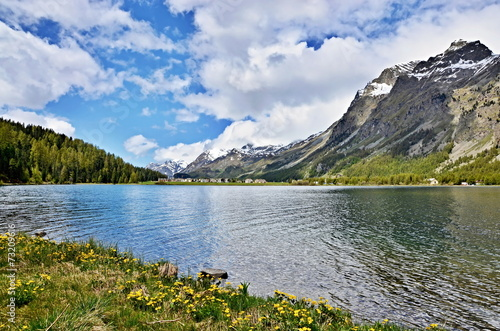 canvas print picture Swiss Alps-lake Silvaplana