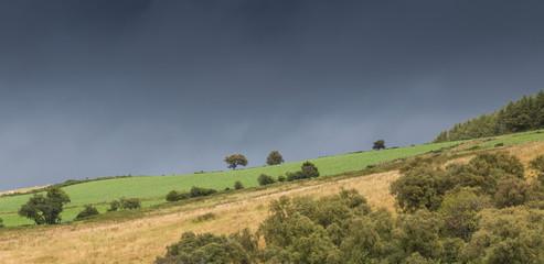 Scottish fields on a hill