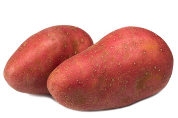 Red Potato with white background