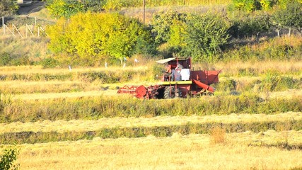Combine Harvesting Field in Autumn