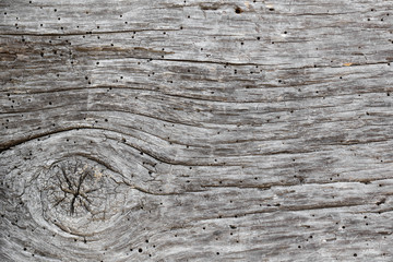 Faded timber texture