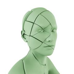 Human head cut