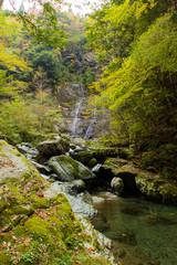 安居渓谷 昇竜の滝