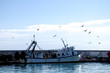 canvas print picture - Fischerhafen in Andalusien - Spanien