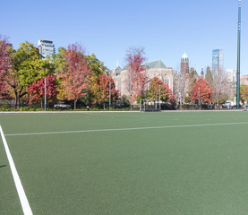 College Playing Field