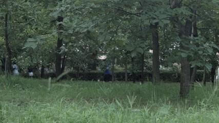 公園で運動するひとびと