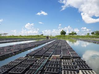Aquaculture in Myanmar
