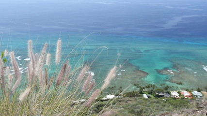Pacific ocean view from top of Diamond head mountain