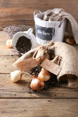 Flower bulbs with soil